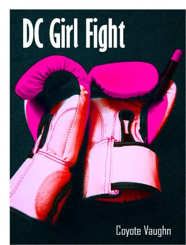 Currently reading: DC Girl Fight