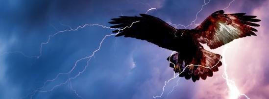 thunderbird-bg_04